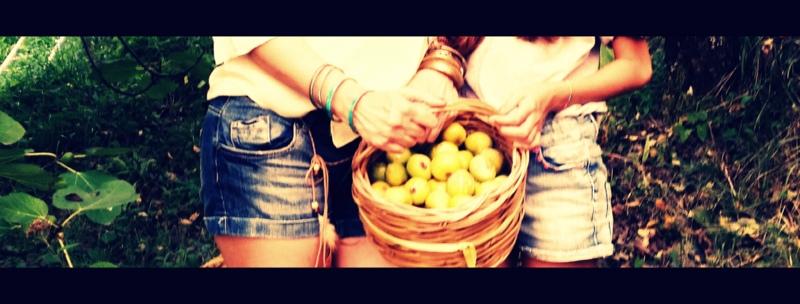 Fig & Arugula salad (4/6)
